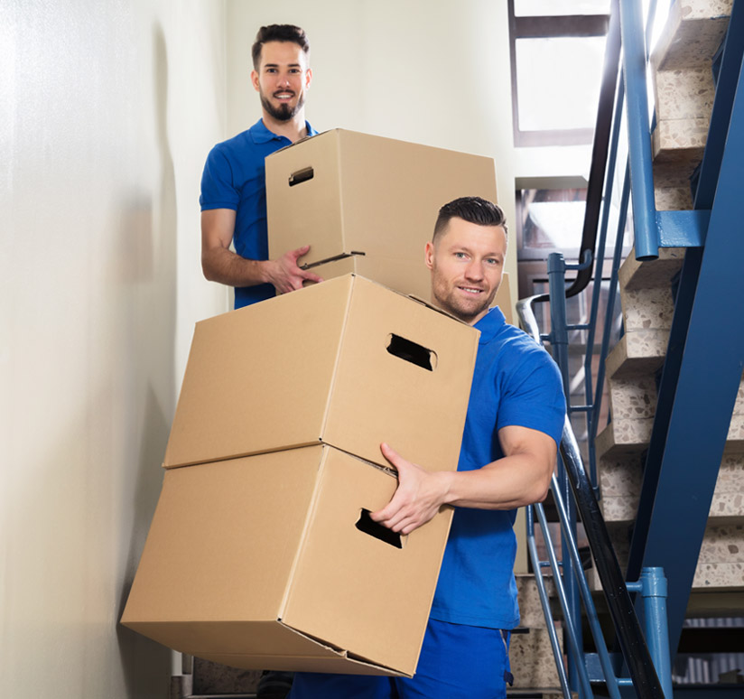 Reasons to choose Kyle Bay Removals